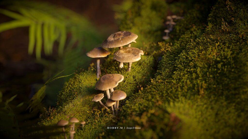 Nature-study-3D-mushrooms