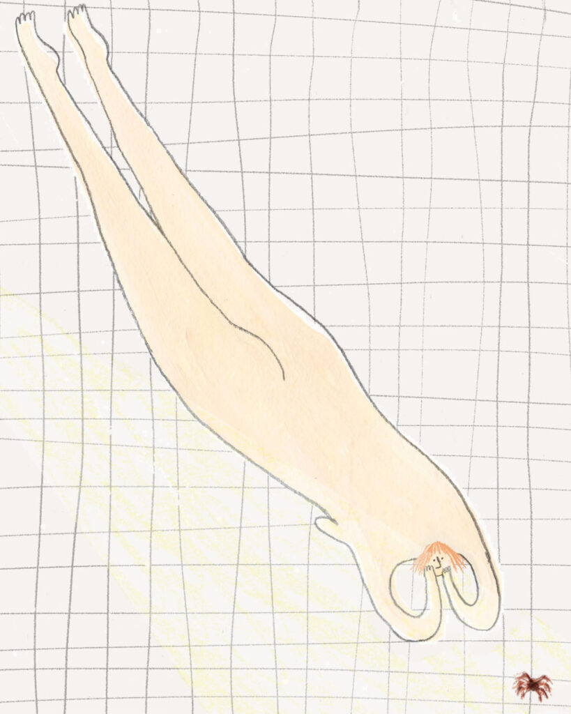 illustration-by-katy-streeter-of-a-naked-lady-watching-a-spider
